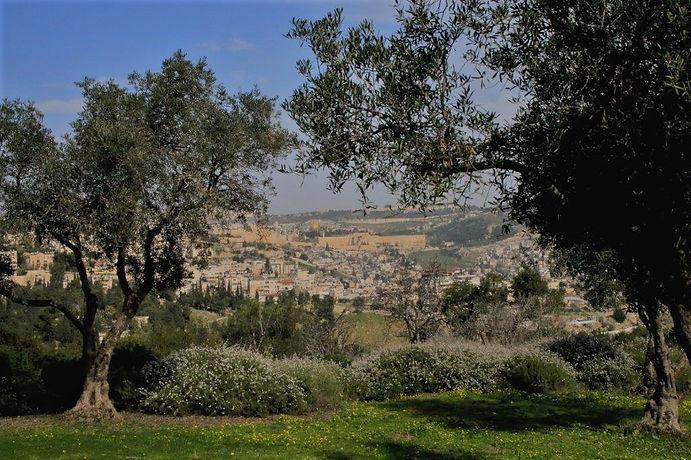 Jerusalem 2021-7.jpg