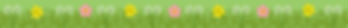 Birchgrove Primary Footer