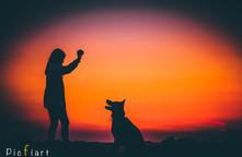 Mensch & Tier