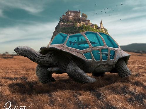"""Turtle Life"" von Picfiart"