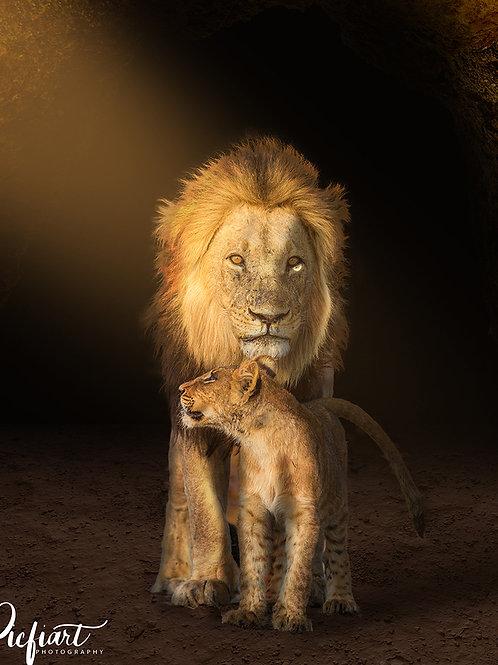 """ Two Lions"" von Picfiart"