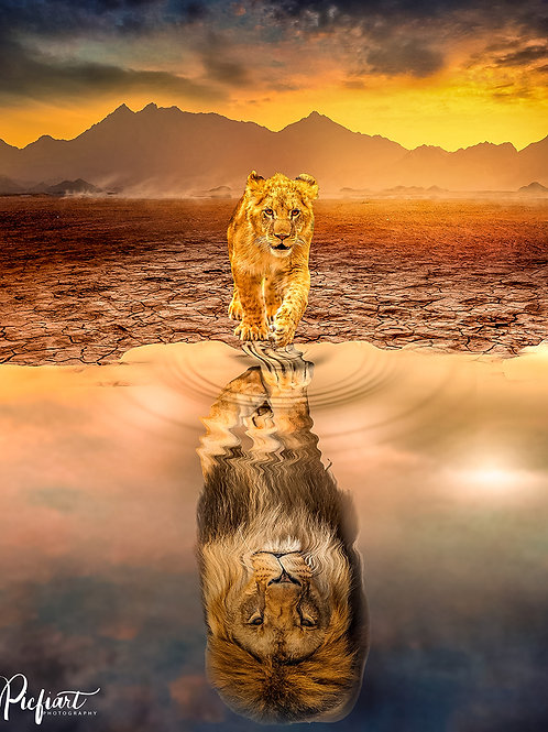 """""""Lions"""" von Picfiart"""