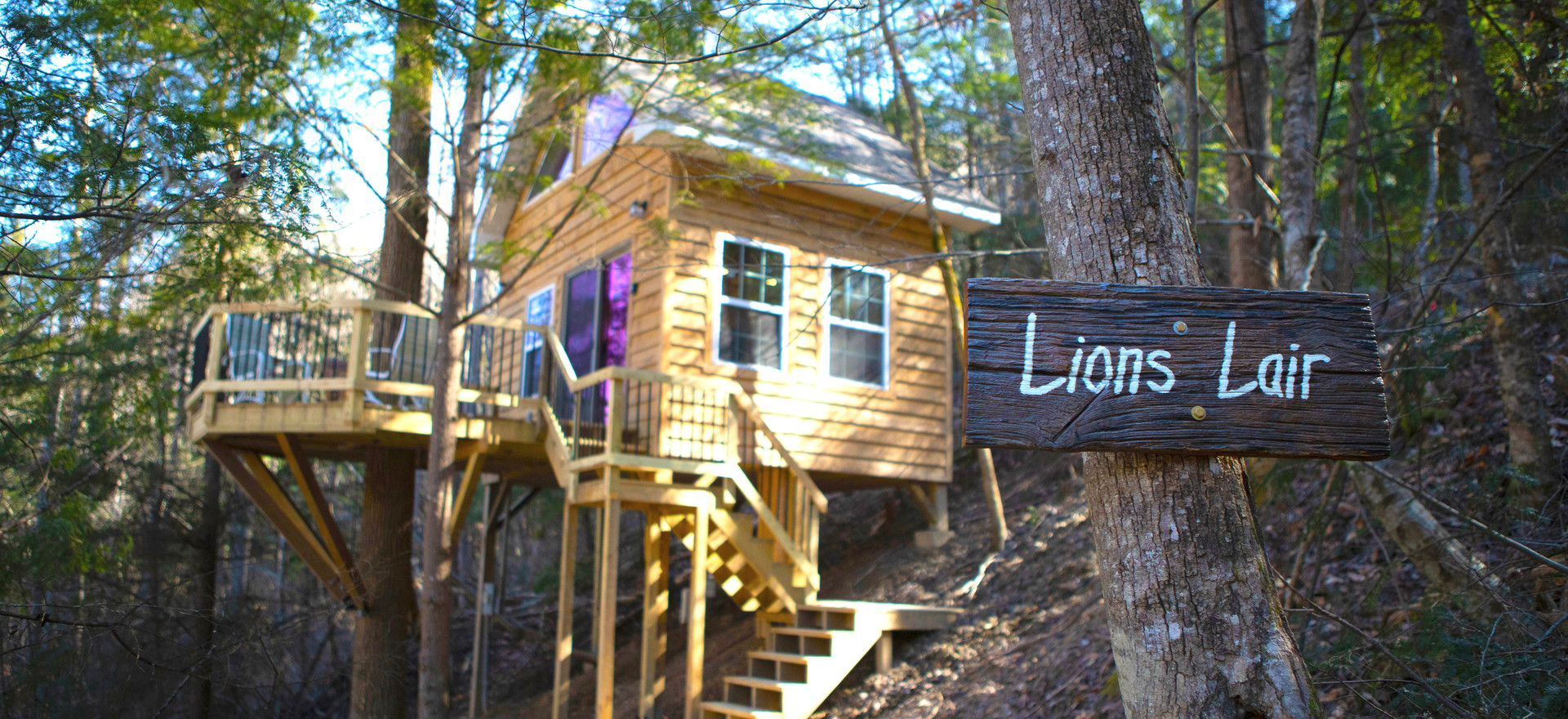 Lions Lair Treehouse!