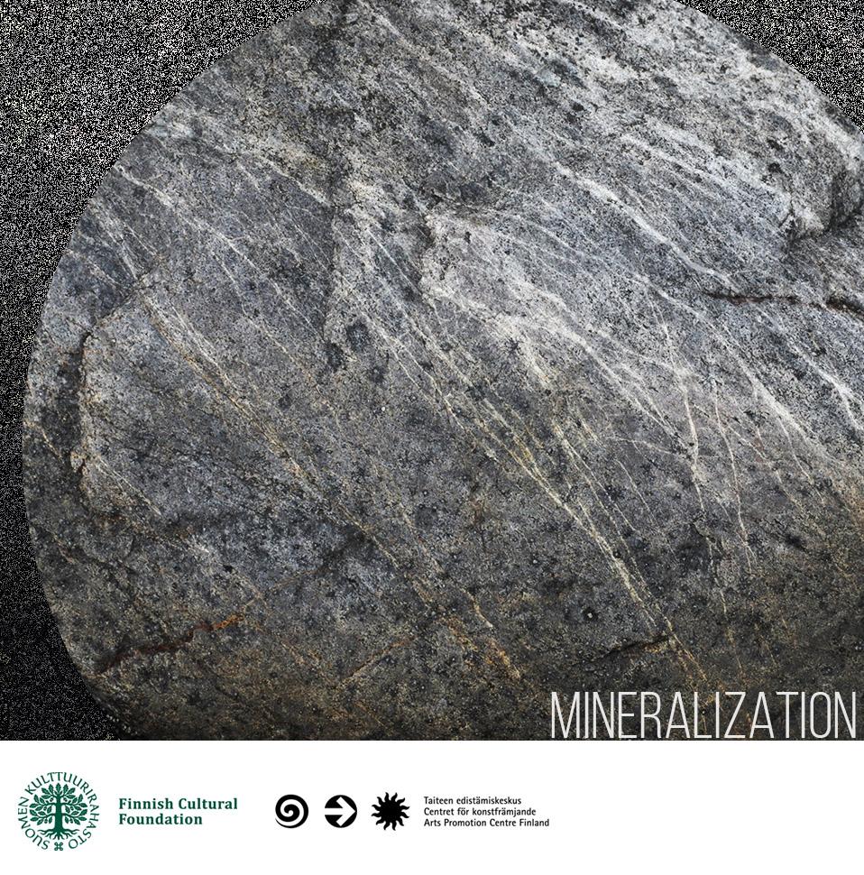 Mineralization_new