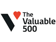 Valuable 500 logo_big.png