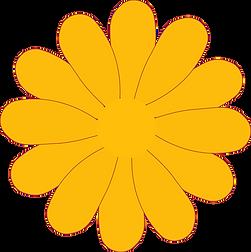 daisies-clipart-gerber-daisy-17_edited.p