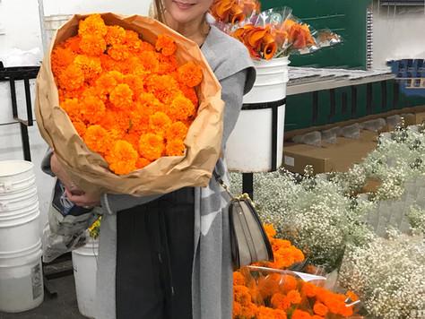 Trip to the LA Flower Market