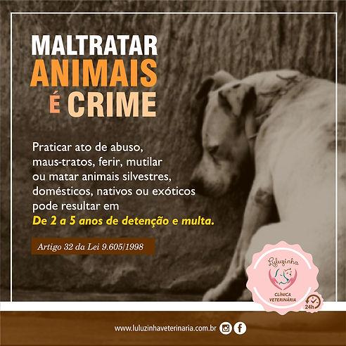 MAUS TRATOS CRIME.jpg