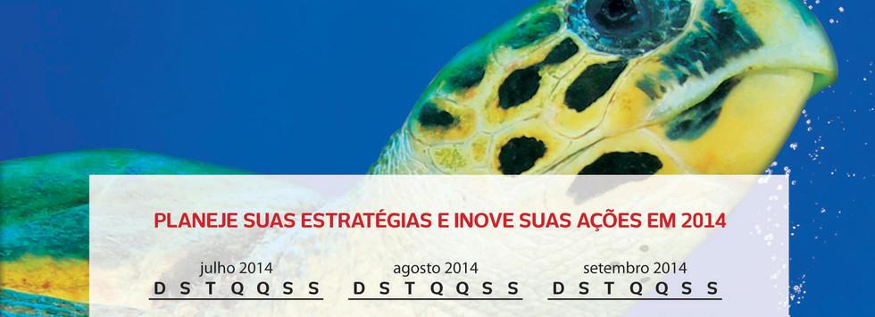 Calendario Projeto Tamar.jpg