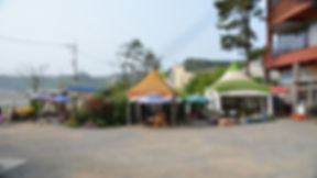 해송 앞마당