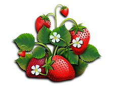 strawberries-2500159.png