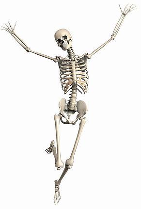 skeleton-2504341_1280.jpg