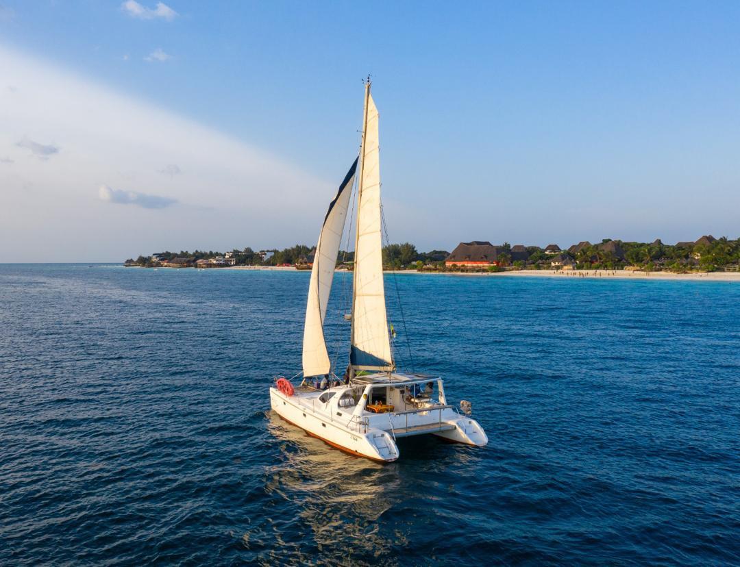 Pelagic sailing.jpg