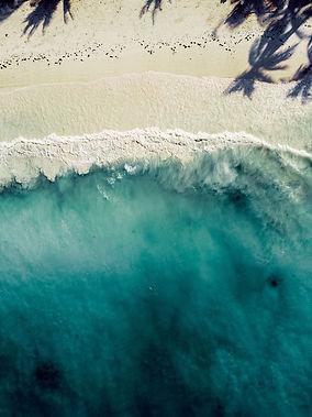 Zanzibar beach aerial