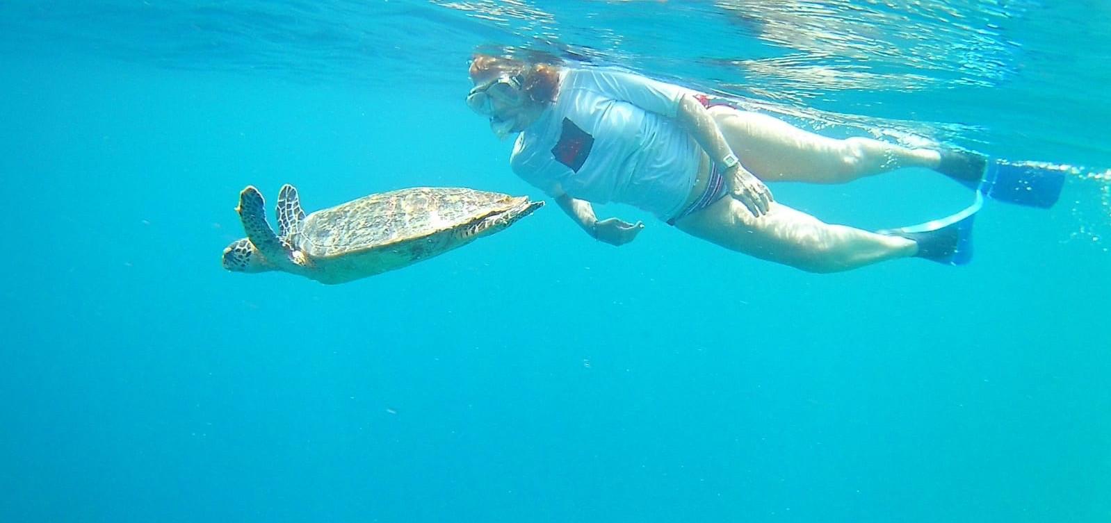 Snorkelling with turtles.JPG