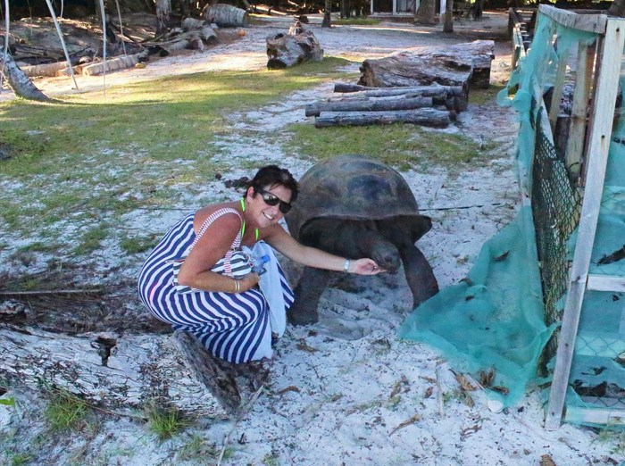Giant Tortoise Tour