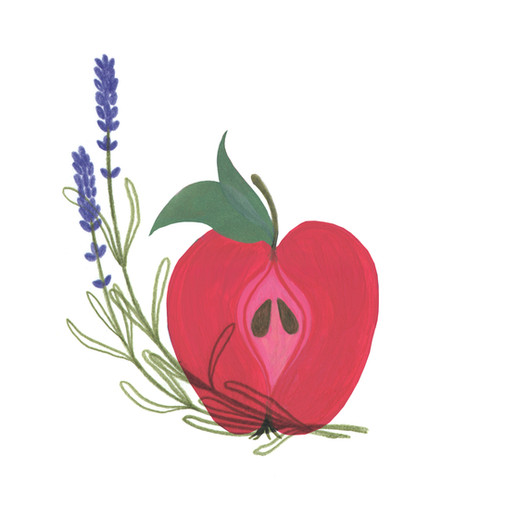 Decorative  illustrations for a wedding gift.