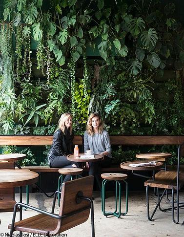 Verve Coffe Los Angeles