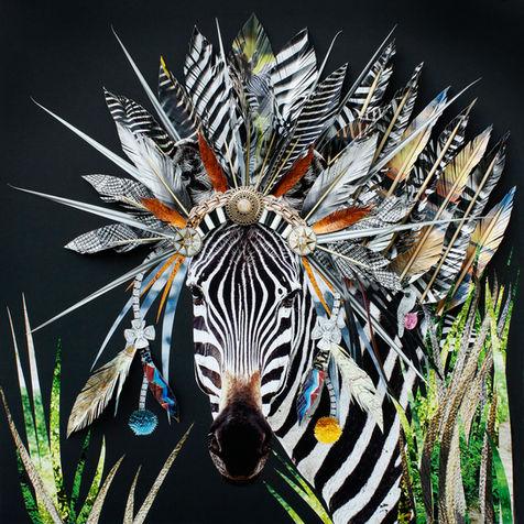 _MG_2260 Zebra-MASTER.jpg