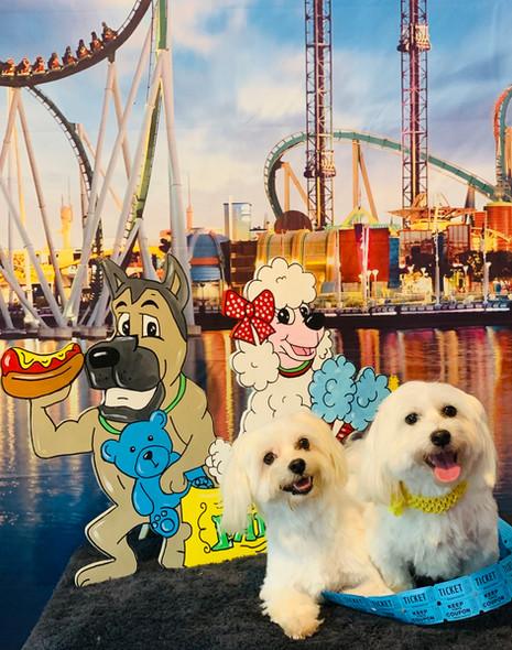 Fun with friends at the fair!