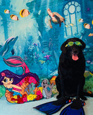 Under the sea fun at Pampered Li'l Paws!