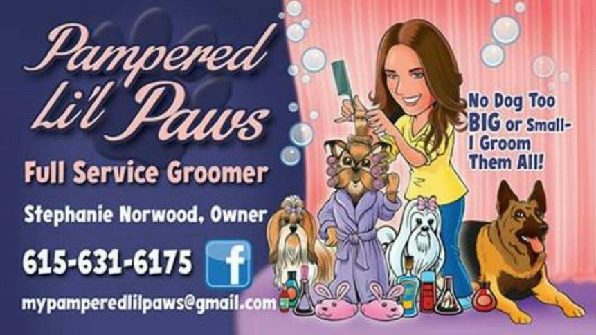 Full service groomer in Murfreesboro, TN