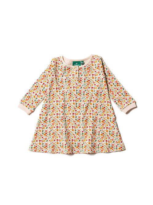 Little Green Radicals Autumn Blossom Dress
