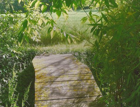 petit pont sur l'eau.jpg