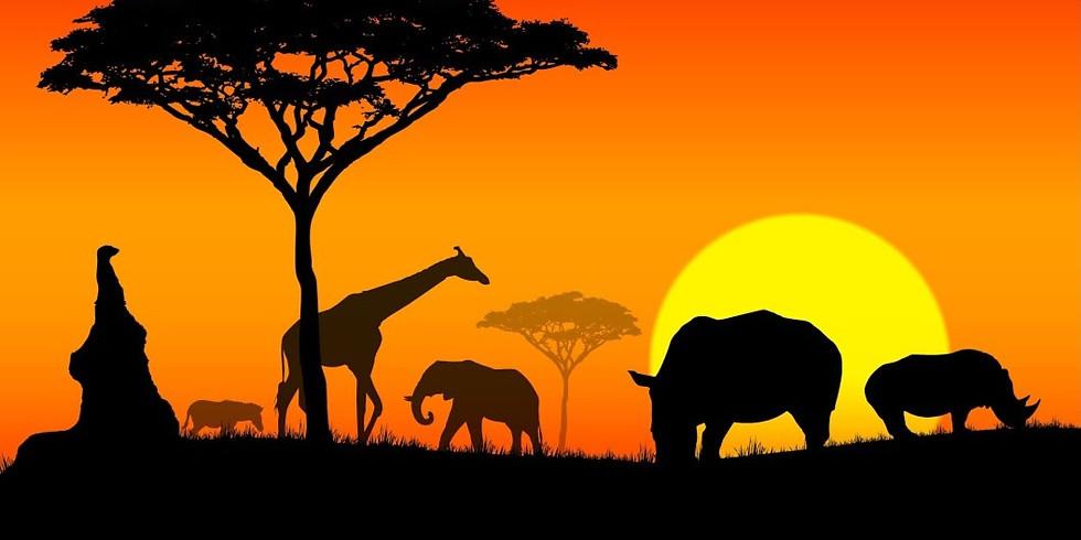Puls Afrika