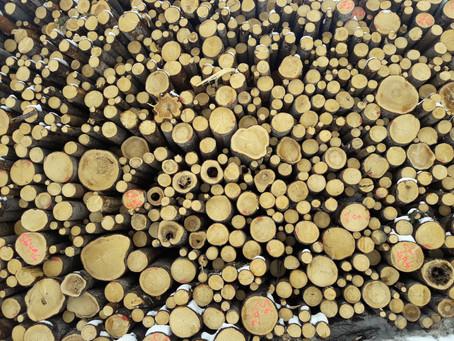 materialer og mønster i naturen