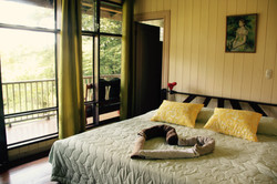 Colibri-king size bed