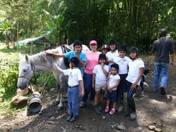 Kinder Pferdeprojekt