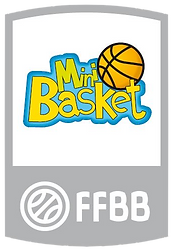 Mini basket.png