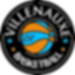 Logo USV.png