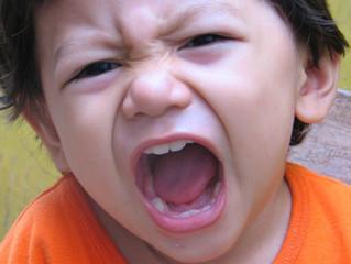 4 Little Behavior Problems You Shouldn't Ignore