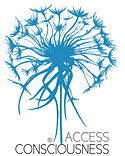 Access Consciousness, Access Bars, Access Body Processes