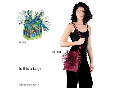 Is This A Bag by Alexandra Tsoukala