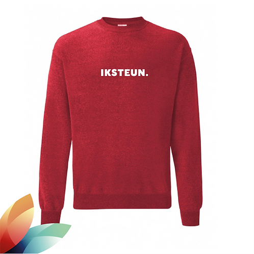 Sweater  IKSTEUN.