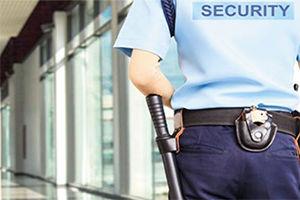 Security Officers.jpg