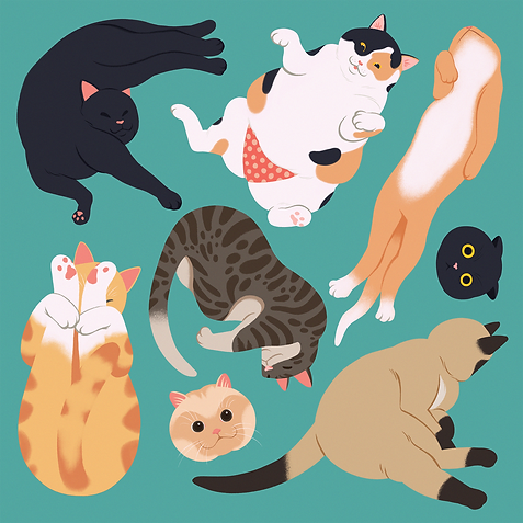 Cats_illu.png