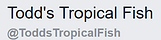 Todds Tropical Fish.png