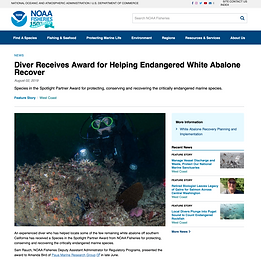 Diver Receives Award for Helping Endangered White Abalone Recover_August 2019.png