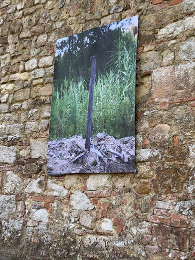 Podere San Giorgio - Il blog