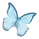 Aquarel Butterfly 9