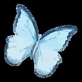 Акварель Бабочка 9