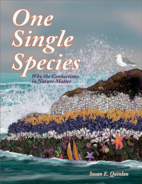 One Single Species by Susan Quinn