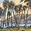Thumbnail: Palms at Spring, Bequia