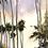 Thumbnail: Spring, Mt Pleasant Bay