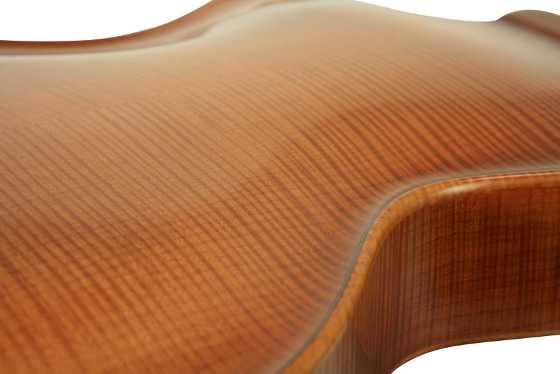 Tulip Back Waist Arch Bass Side.png