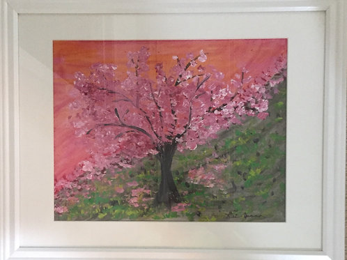 Cherry Blossoms Anyone